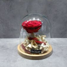 A FOREVER ROSE in a dome glass  / Ενα ΔΙΑΤΗΤΗΜΕΝΟ ΤΡΙΑΝΤΑΦΥΛΛΟ μεσα σε θολο